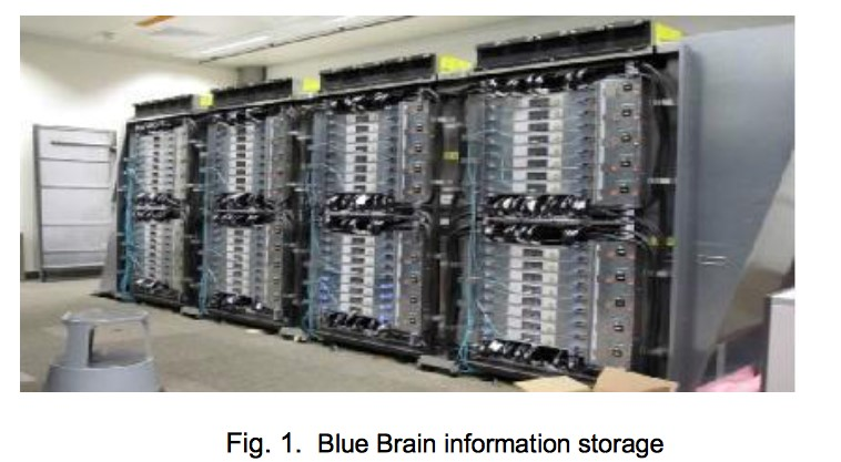 Blue Brain information Storage