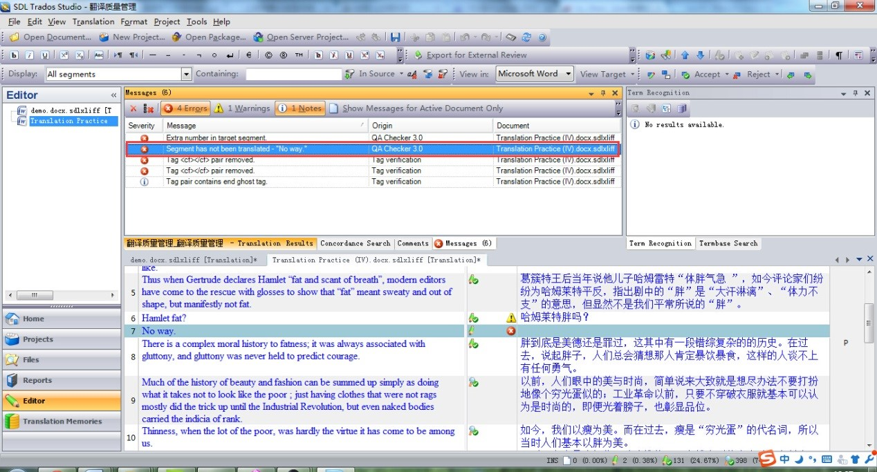 Fig.21. Untranslated Segment in SDL Trados Studio 2011