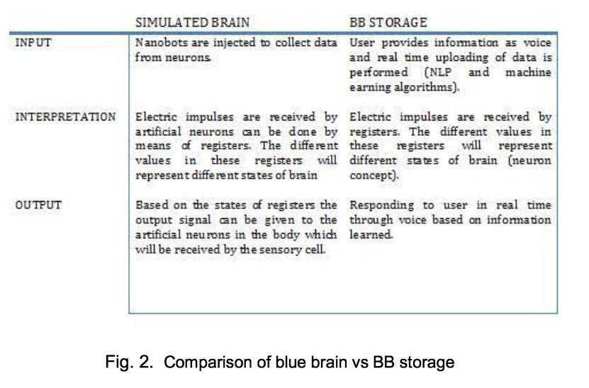 Blue Brain vs BB Storage