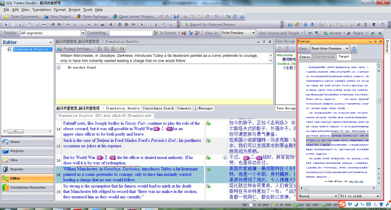 Fig.7. Real-time Preview in SDL Trados Studio
